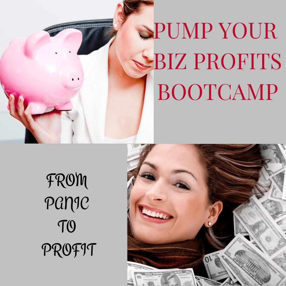 Pump Your Biz Profits Bootcamp Feature Picture